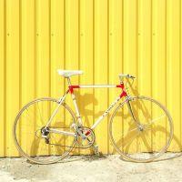 De fietsenmaker bij Wilgenhof